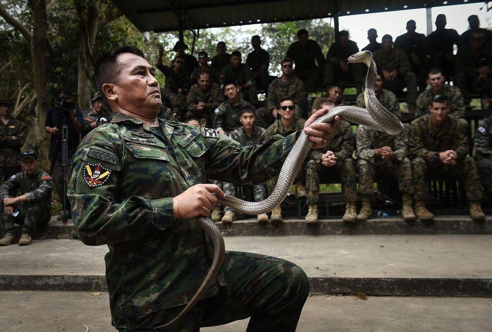 Militar tailandês maneja cobra durante as manobras multinacionais Cobra Gold na Tailândia