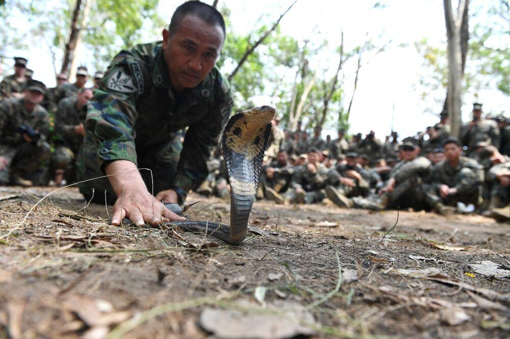 Tailandês mostra como lidar com cobra durante os treinamentos de sobrevivência, em 14 de fevereiro de 2019