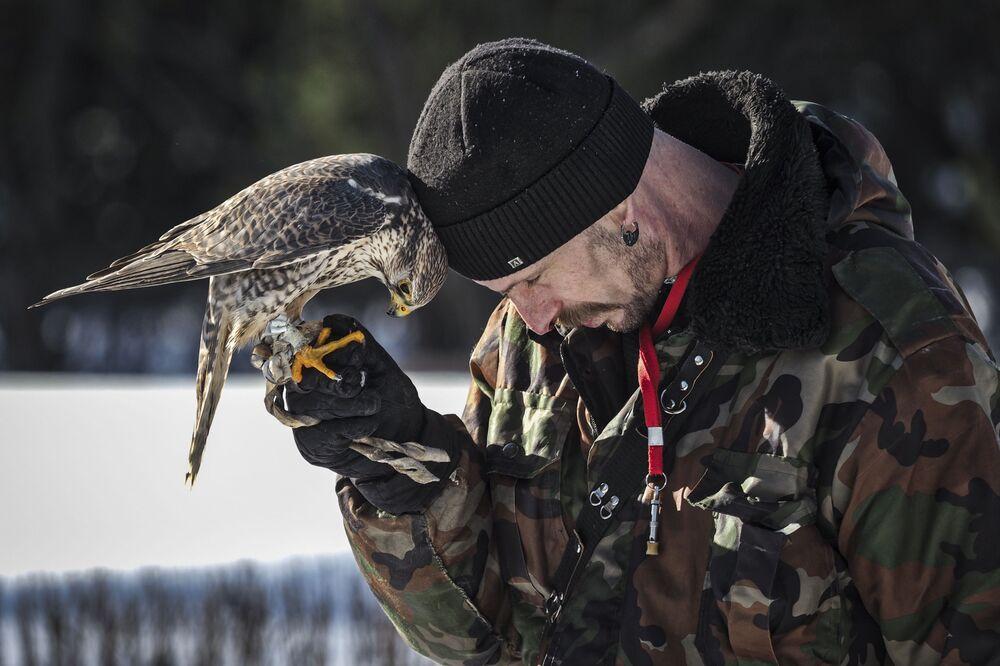 Festa do Falcão dedicada a aves de rapina no parque Sokolniki em Moscou