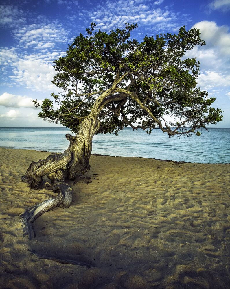 Praia da Águia na ilha de Aruba, localizada no mar do Caribe