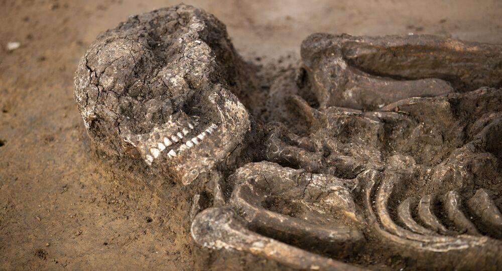 Esqueleto de 6,5 mil anos em uma cova em Kitzingen na Alemanha, 5 de março de 2019