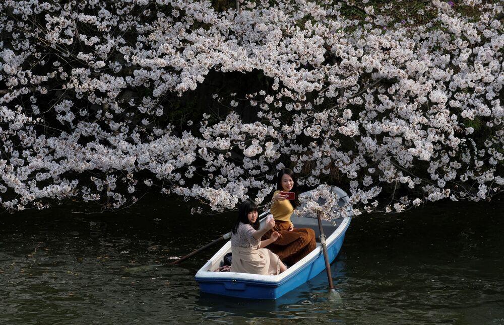 Jovens tiram selfie sentadas em um barco perto de uma sakura florescente, em Tóquio
