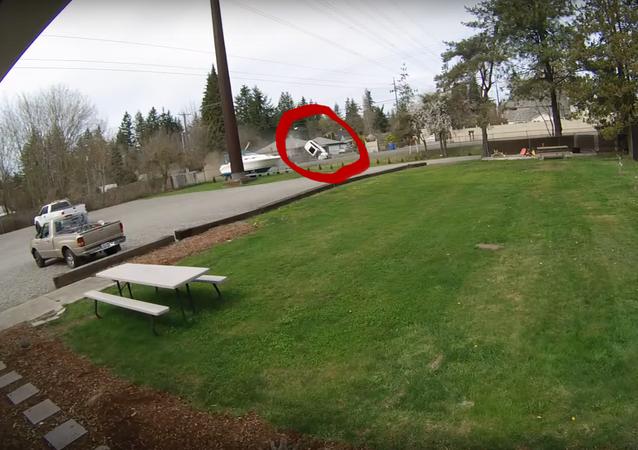Ladrão capota com carro após roubar veículo e ser perseguido pela polícia nos EUA