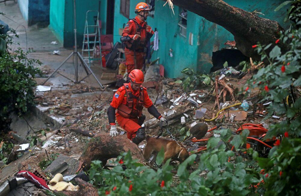 Equipe de resgate com cães em área de deslizamento de terra no Rio de Janeiro