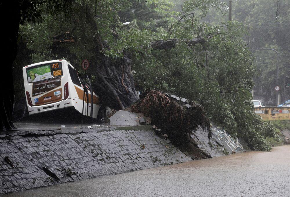 Ônibus é visto debaixo de árvores derrubadas por fortes chuvas