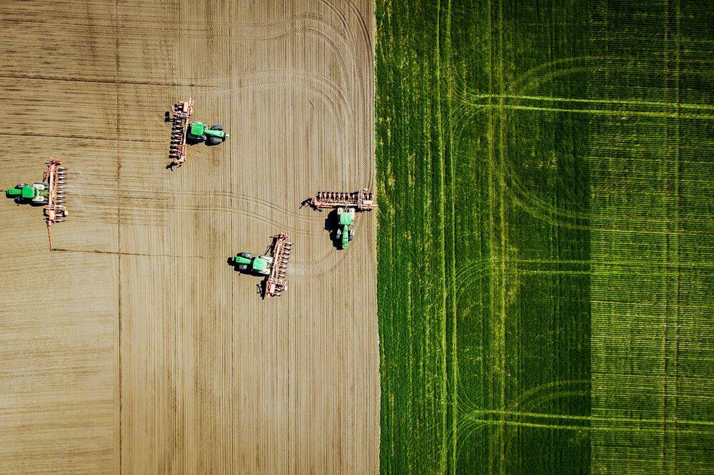 Plantação de girassol na Rússia