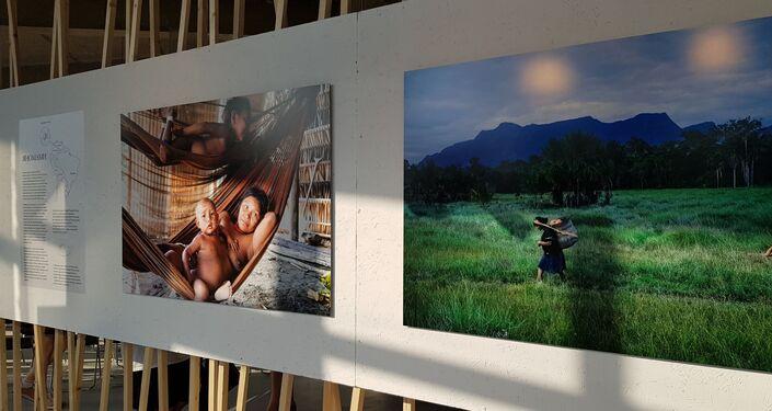 Imagens da exposição Amazonas, Moscou, 6 de junho de 2019