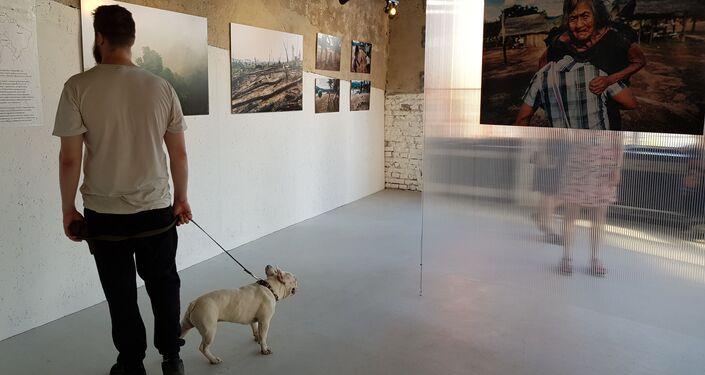 Visitante trás seu cachorro para apreciar exposição Amazonas, Moscou, 6 de junho de 2019