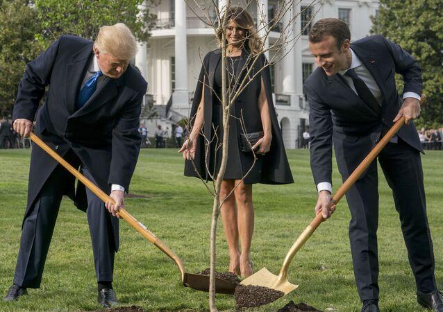 Presidente dos EUA Donald Trump, sua esposa Melania e presidente da França Emmanuel Macron plantam carvalho no gramado em frente à Casa Branca