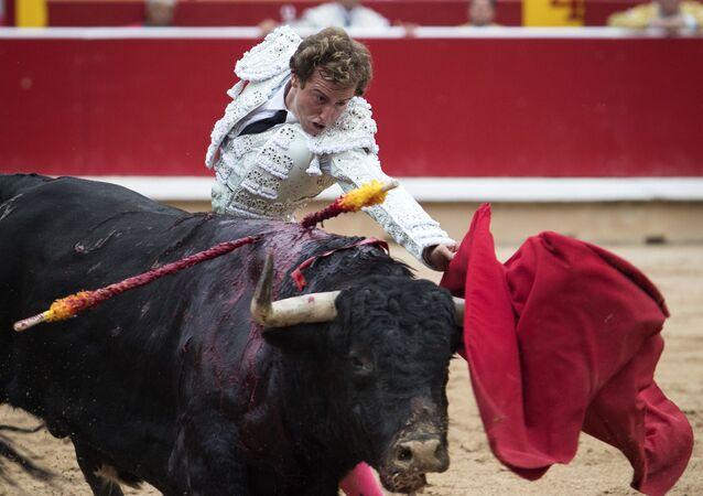 Toureiro Román Collado em Pamplona