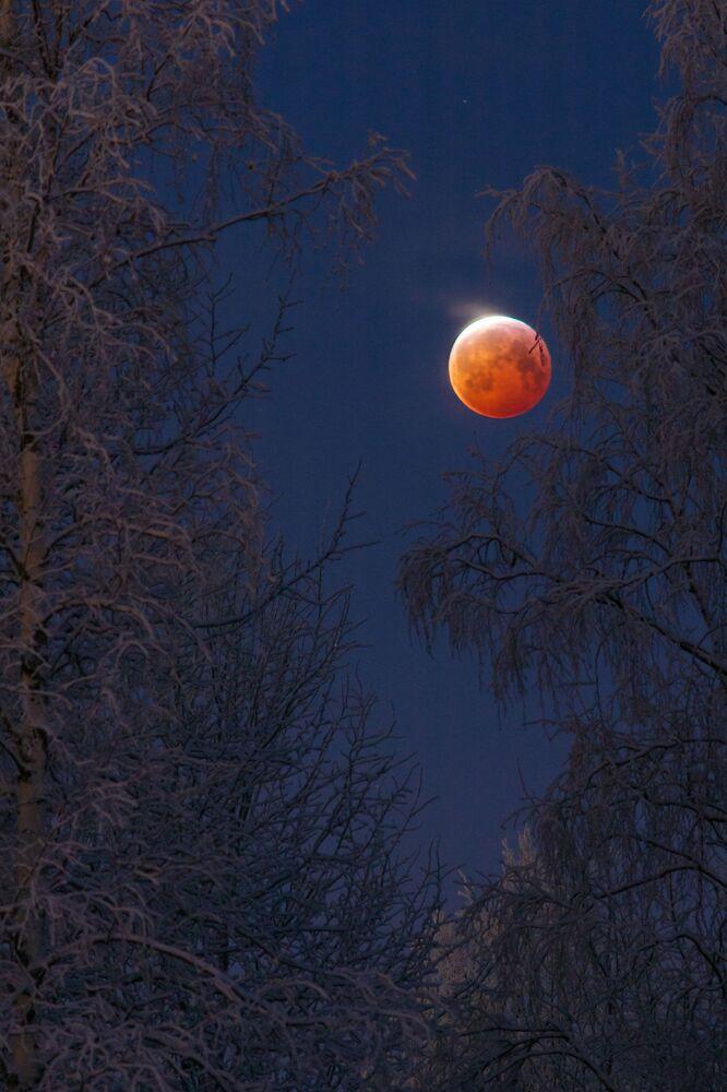 Foto da Lua de Sangue feita pelo fotógrafo finlandês Keijo Laitala