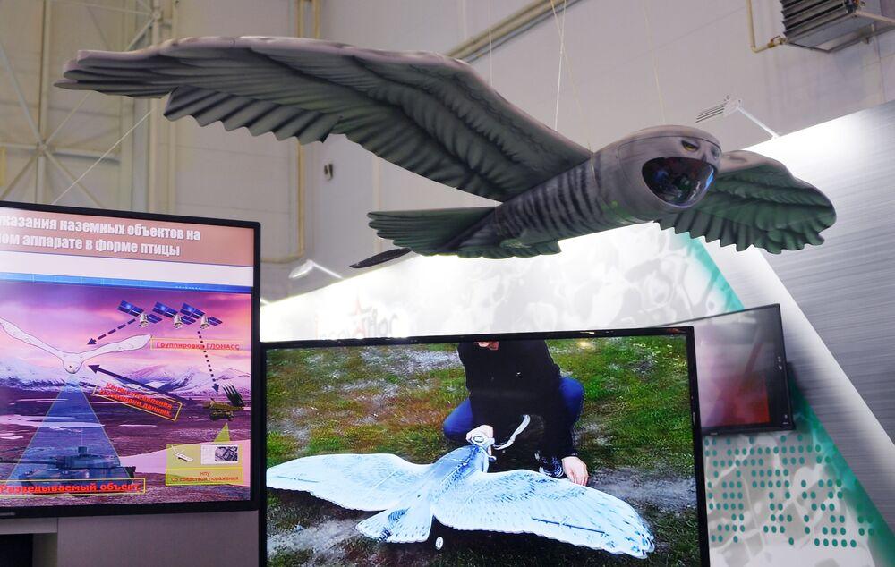 Sistema de reconhecimento e designação de alvos terrestres instalado em drone em forma de  ave, exibido no fórum internacional técnico-militar EXÉRCITO 2019