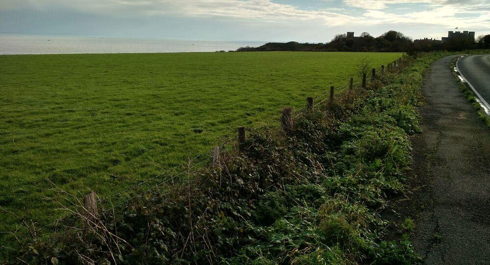 Campos de Dover