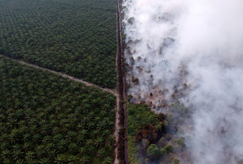 Vista aérea de um incêndio florestal na Indonésia