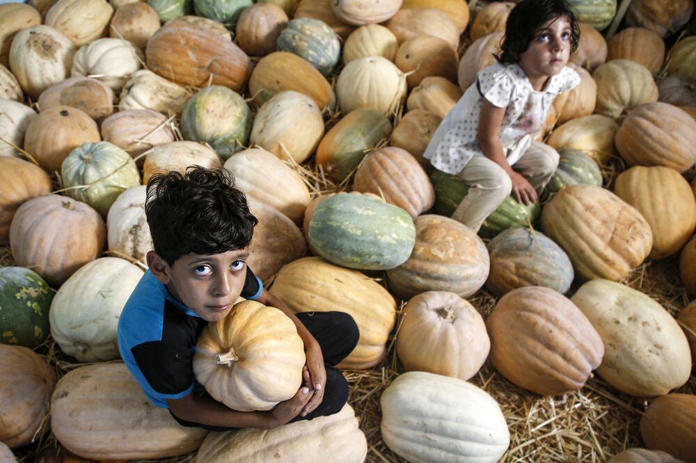 Crianças palestinas na safra de abóbadas na cidade de Beit Lahia, no norte da Faixa de Gaza