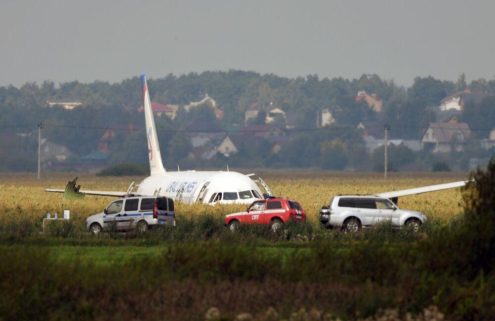 Avião Airbus A321 da companhia aérea Ural Airlines que fez um pouso forçado em uma plantação de milho, região de Moscou
