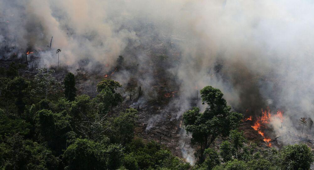 Imagem de queimada na Amazônia, na cidade de Novo Progresso, Pará