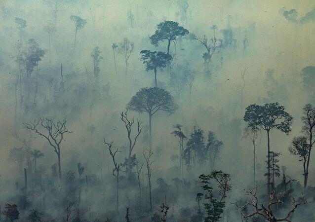 Floresta Amazônica coberta por uma capa de fumaça, em consequência dos incêndios que vêm devastando a maior floresta tropical do mundo