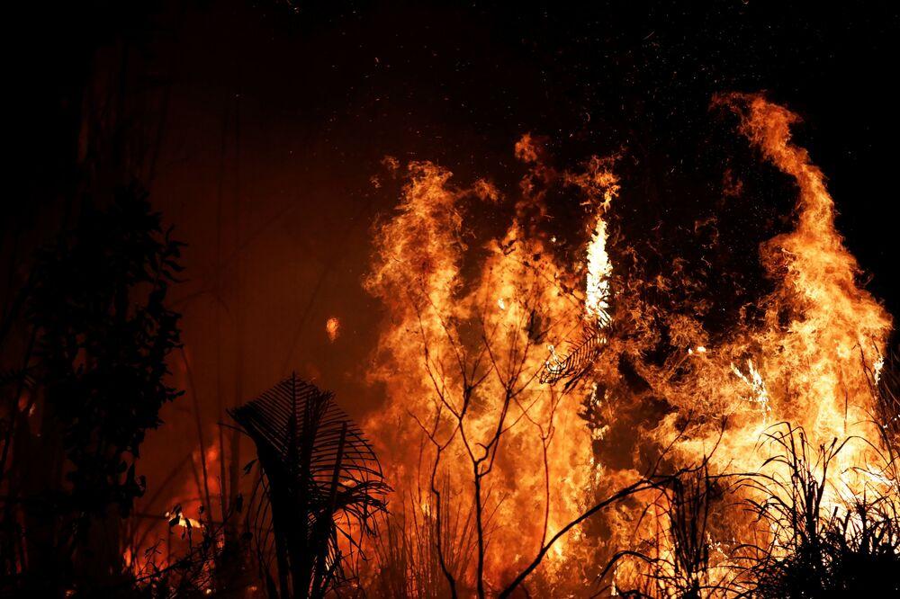 Incêndios florestais no território brasileiro da Amazônia