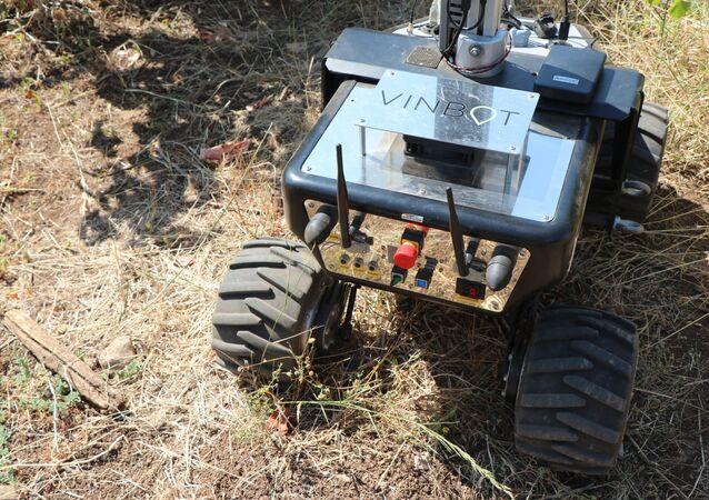 Robô Vinbot