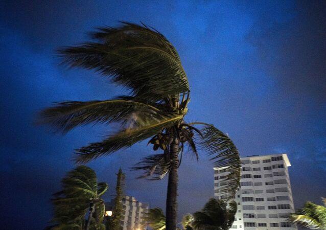 Ventos fortes nas Bahamas ocasionados pelo furacão Dorian, 1º de setembro de 2019