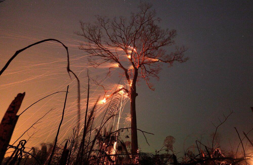 Trecho queimado da selva amazônica sendo desmatado por fazendeiros em Rio Pardo, Rondônia, Brasil, 15 de setembro de 2019