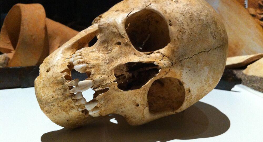 Crânio (foto de arquivo)