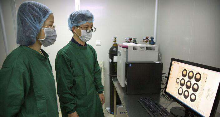 Imagens dos embriões modificados pela técnica CRISPR, na China, em outubro de 2018