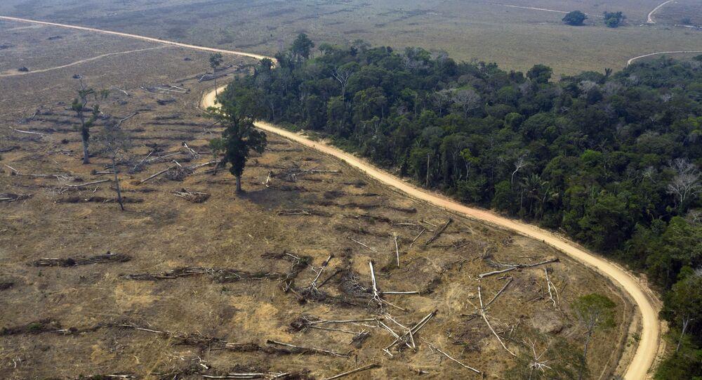 Área desmatada da Amazônia nas proximidades de Porto Velho.
