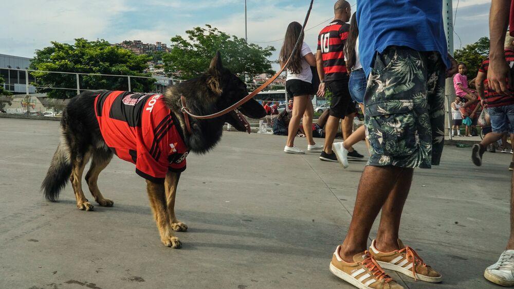 Flamengo vence a Libertadores