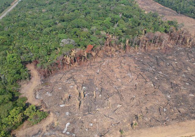 Imagem de drone de área desmatada e queimada na parte rural de Humaitá, no sul do Amazonas