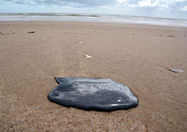Manchas de óleo atingem a praia da Coroa do Meio, em Aracaju (SE)