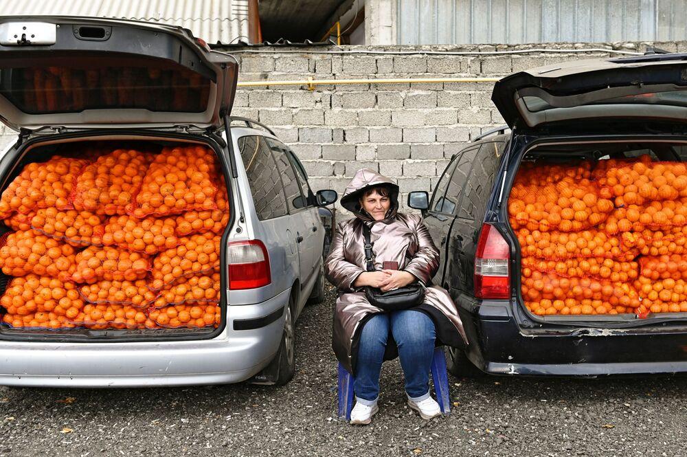 Venda de tangerinas na fronteira entre a Rússia e Abkházia