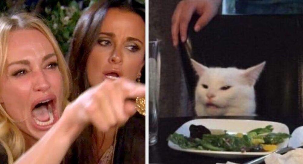 O meme do 'gato e a mulher', muito compartilhado em 2019 na internet.