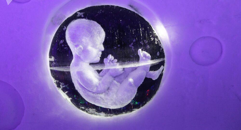 Embrião humano