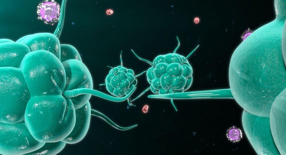 Células de câncer atacando o sistema imunológico