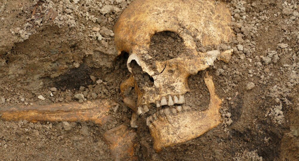 Crânio da Era dos Vikings na Suécia