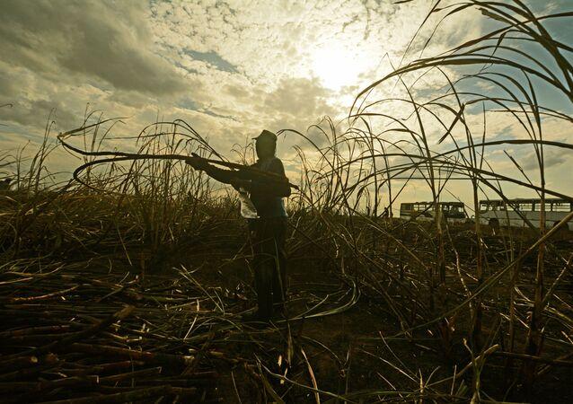 Diligência de trabalho escravo no sul da Bahia. Fiscalização realizada por auditores, procuradores e polícia rodoviária federal, visita fazendas para inspeção das condições de trabalho.