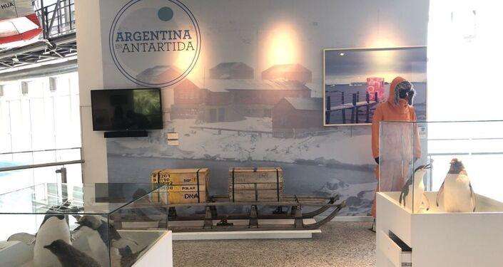 A Antártica tem seu espaço relevante na exposição permanente