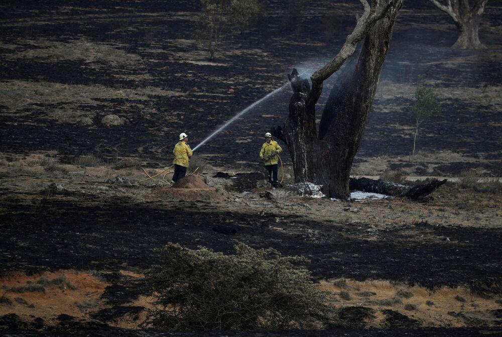 Bombeiros lançam água sobre uma árvore fumegante após incêndio perto de Bumbalong, na Austrália