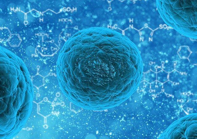 Vírus (imagem referencial)