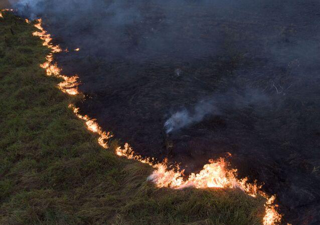 Vista aérea de queimada na Floresta Amazônia, vista à partir da cidade de Porto Velho, capital de Rondônia