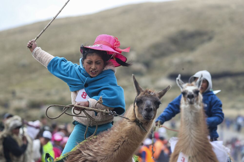 Milena Jami cavalga em sua lhama para conquistar o primeiro lugar na corrida para crianças no Parque Nacional Llanganates, no Equador