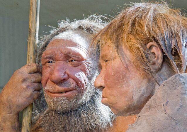 Neandertais no museu Neanderthal em Mettmann, Alemanha (foto de arquivo)