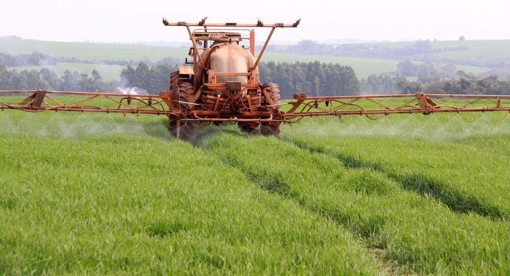 Máquina agrícola aplica fungicida em plantação de trigo em propriedade rural em Campo Mourão (PR)