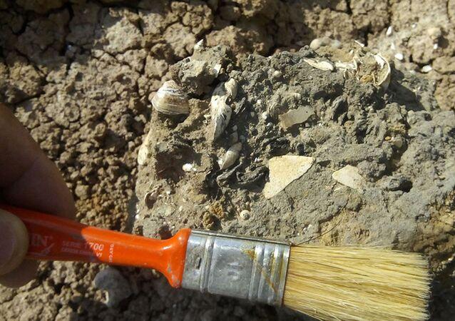 Especialistas trabalham em praia de 5.000 anos, descoberta na Argentina
