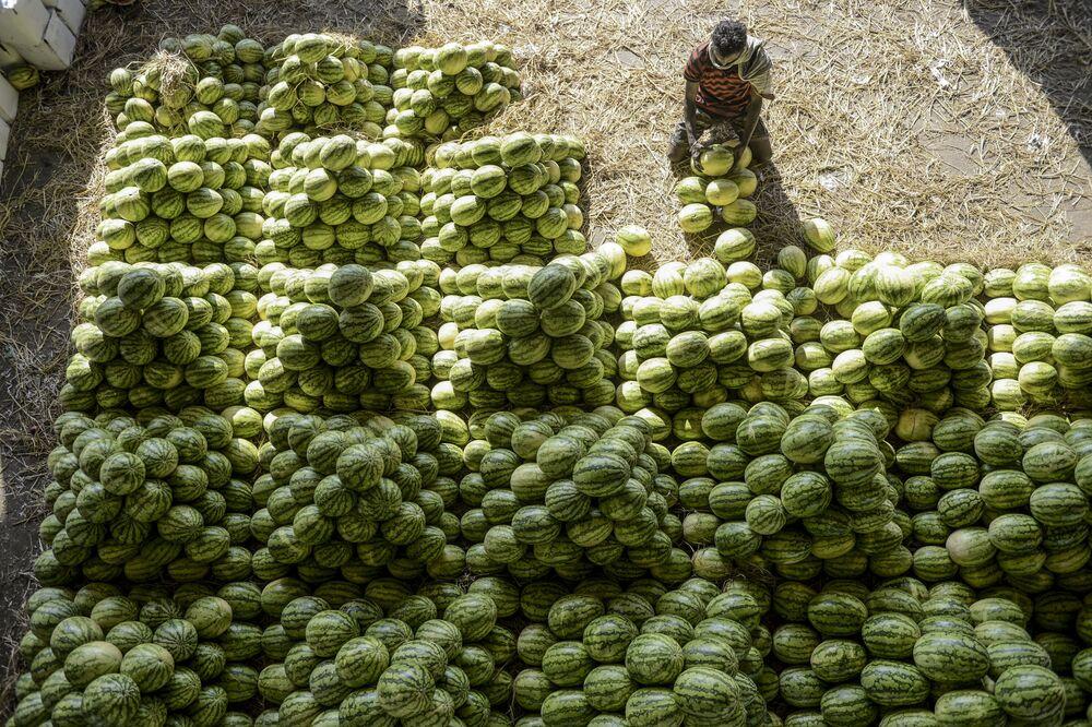 Trabalhador arrumando melancias antes de venda no mercado de frutas de Gaddiannaram, em Hyderabad, Índia