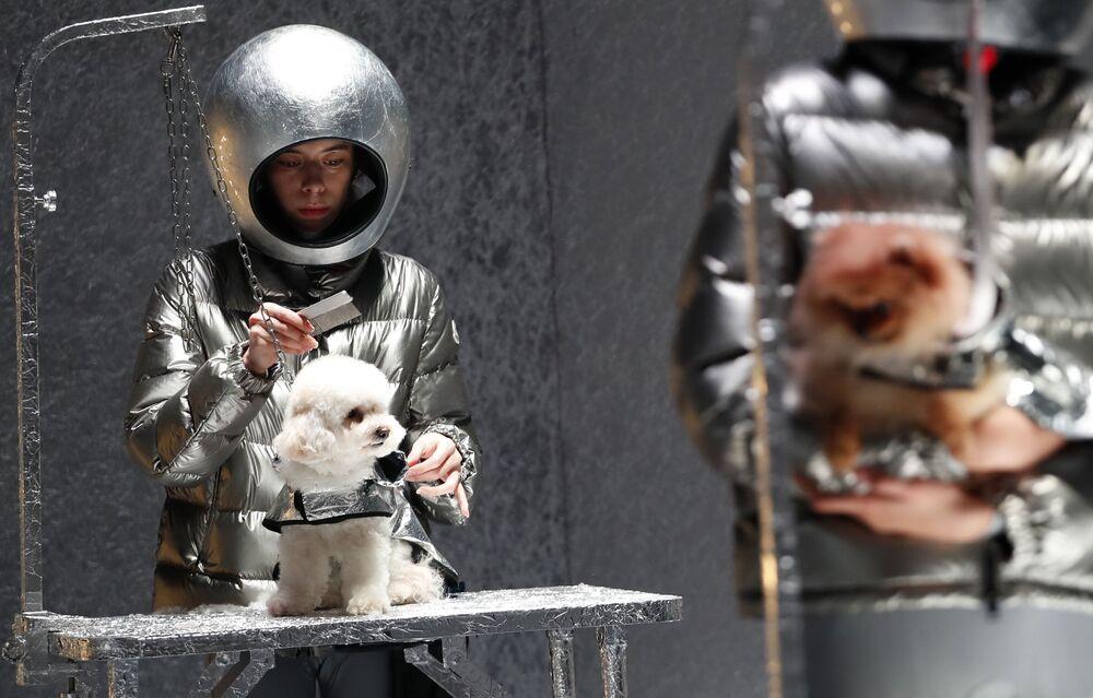 Modelos e cachorros durante apresentação da coleção Moncler, na Semana de Moda de Milão, Itália