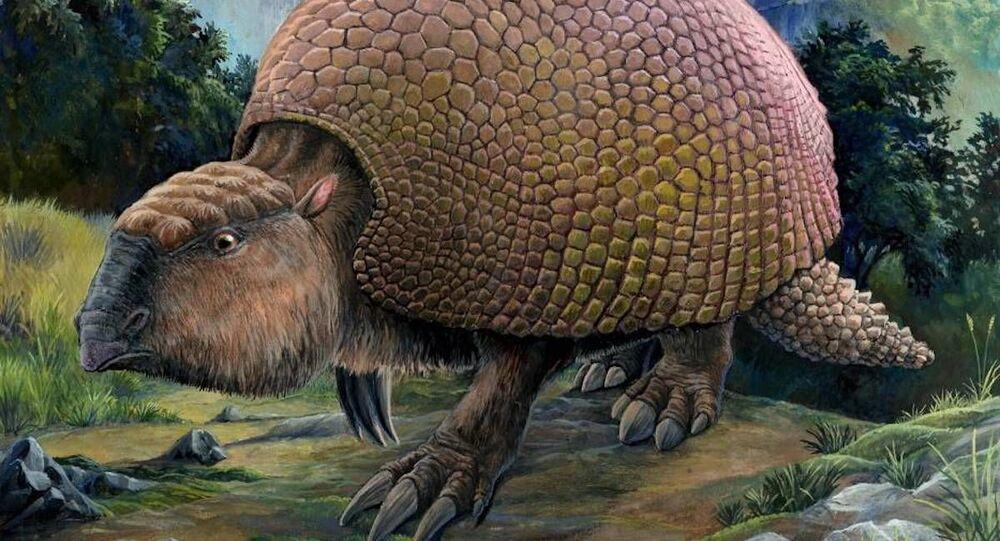 Gliptodontes (imagem referencial)