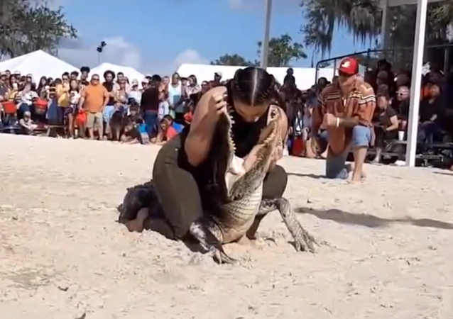 Mulher enfia cabeça dentro de mandíbulas de jacaré na Flórida
